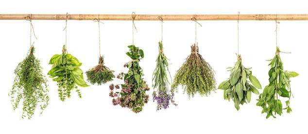 herbshanging-essential-oil